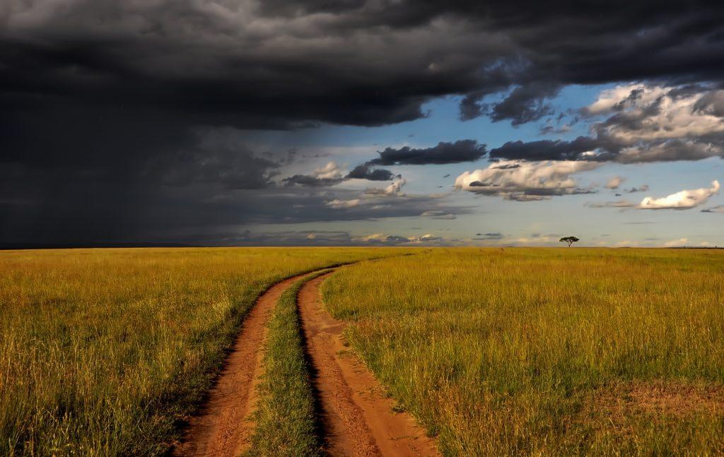 Vast plains of the Masai Mara , seen while on a safari in Kenya