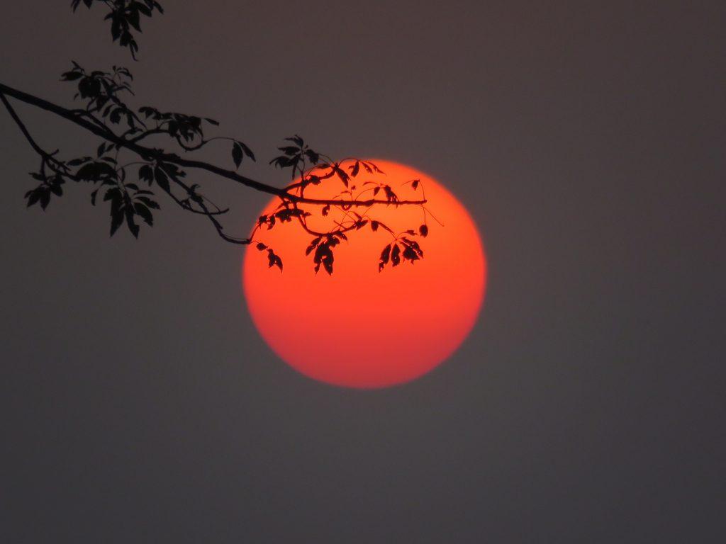 Sunset in Kaziranga